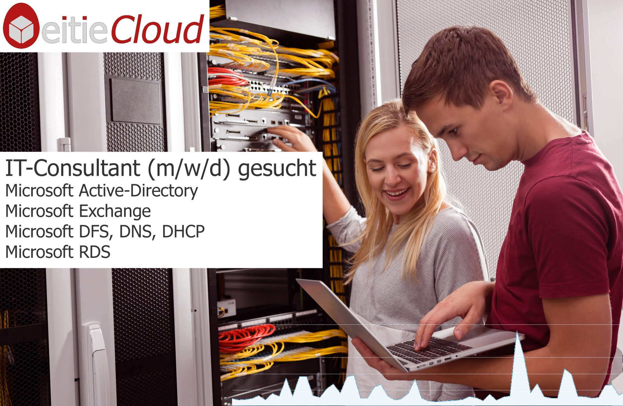 Microsoft Active Directory, DNS, DHCP, DFS, Exchange, RDS